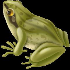 frog_green